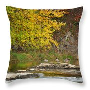 Life On The River Throw Pillow by Bill Wakeley