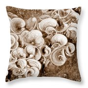 Life On The Rocks In Sepia Throw Pillow