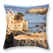 Life's A Bench Throw Pillow