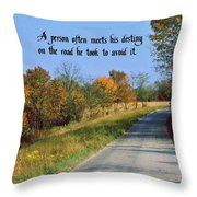 Life's Destiny Throw Pillow