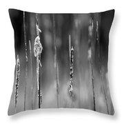 Life's Ripple - Center Throw Pillow by Steven Santamour