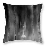 Life's Ripple - Left Throw Pillow by Steven Santamour