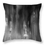 Life's Ripple - Right Throw Pillow by Steven Santamour