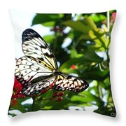 Light And Butterfly Throw Pillow