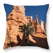 Light And Shadow In The Bryce Canyon  Throw Pillow