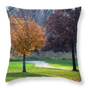 Light And Shadows In Autumn Throw Pillow