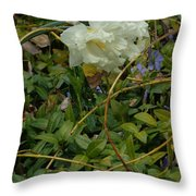 Light Daffodils Throw Pillow