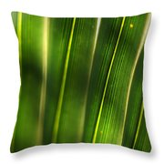 Light Filter Throw Pillow