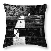 Light Finds A Way Throw Pillow