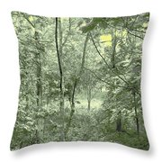 Light Forest Scene Throw Pillow