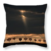 Light From The Sky Throw Pillow