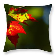 Light Gives Us All A Chance Throw Pillow by Aimelle