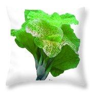 Light Green Iris Throw Pillow