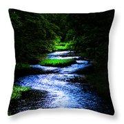 Light In The Creek Throw Pillow