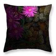 Light In The Rock Garden Throw Pillow