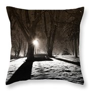Light In The Shadows Throw Pillow
