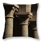 Light N Shadow Throw Pillow