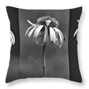 Light Of Day In Black And White Throw Pillow