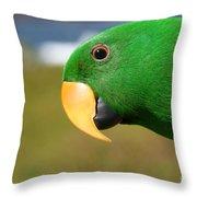 Light Of Love - Eclectus Parrot Throw Pillow