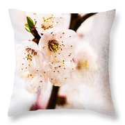 Light Of Spring 3 Throw Pillow
