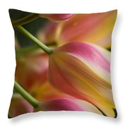 Light Of Spring Throw Pillow