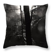 Light Of The Morn Throw Pillow