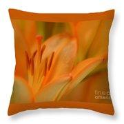 Light Orange Throw Pillow