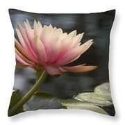 Light Pink Water Lily Throw Pillow