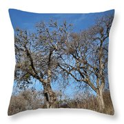 Light Posts And Trees Throw Pillow