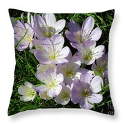 Light Purple Crocus Flowers In Spring Throw Pillow