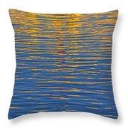 Light Reflections On The Water Throw Pillow