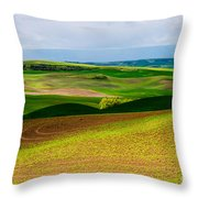 Light Shadow And Color Throw Pillow