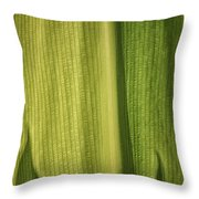 Light Shadow And Tropical Leaves Throw Pillow