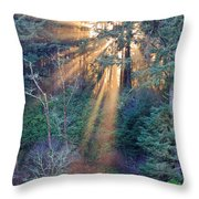 Light Shine Throw Pillow