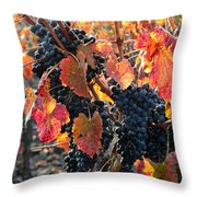Light Through Fall Vineyard Throw Pillow