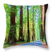 Light Through The Redwoods Throw Pillow