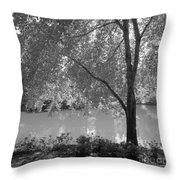 Light Tree Throw Pillow