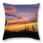 Light Up The Sky Southwest Style  Throw Pillow