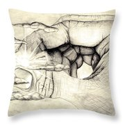 Light Within Throw Pillow