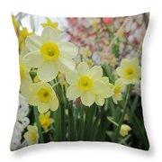 Light Yellow Daffodils Throw Pillow