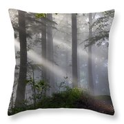 Lightbeams Throw Pillow
