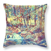 Lighting The Creek Throw Pillow