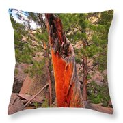 Lighting Victim At Devils Tower Throw Pillow