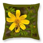 Lightning Bug On Flower Throw Pillow