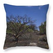 Lightning Struck Tree Throw Pillow