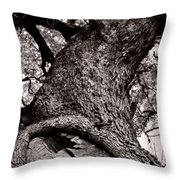 Lightning Tree  Throw Pillow by Trish Mistric