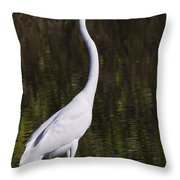 Like A Great Egret Monument Throw Pillow