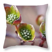 Like A Little Miracle In Front Of Your Very Eyes Throw Pillow