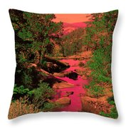 Like A Song It Sings To Me Throw Pillow