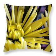 Like Bombs Bursting In Air Throw Pillow